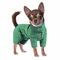 "Комбинезон Pet Fashion ""Цитрус"""