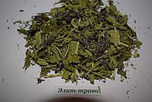 Вероника 50 грамм