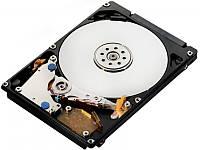 """Жесткий диск IBM Express 2.5"""" 49Y6169"""