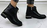 Ferre стильні жіночі демісезонні чоботи натуральна шкіра змійка попереду маленький квадратний каблук, фото 3