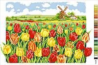 Схемы для вышивки крестом на канве А3-14-025 Тюльпаны и мельница