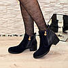 Ботинки синие женские   на каблуке, фото 4