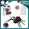 Радиоуправляемый черный паук 1388 на пульте управления | игрушка на радиоуправлении
