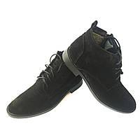 Черные замшевые ботинки Van Kristi на меху
