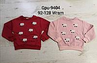 Кофта с начёсом для девочек оптом, Glo-story, 92/98-128 см, № GPU-9404
