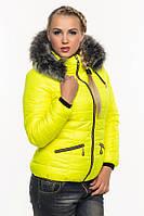Короткая женская зимняя куртка, стеганая.
