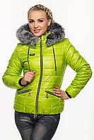 Короткая зимняя куртка, стеганая., фото 1