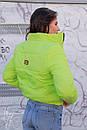 Женская короткая демисезонная куртка на молнии 60kur156, фото 5