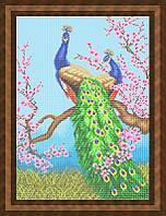 Схема для полной вышивки бисером - Павлины на ветке сакуры, Арт. ЖБп2-2
