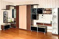 Шкаф-кровать трансформер для гостиной, фото 1