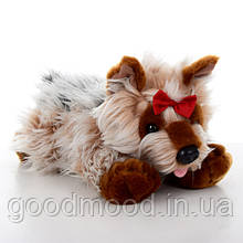М'яка іграшка SD5458 собачка, йорк, 35 див.