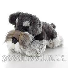 М'яка іграшка SD5453 собачка, шнауцер, 30см
