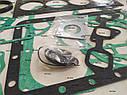 Ремкомплект прокладок на двигатель Kubota V2203 (3120 грн), фото 6