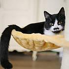 Когтеточка, домики, дряпка для кошек 138см, фото 9