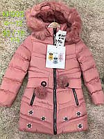 Куртка зимняя на меху для девочек S&D 4-12 лет