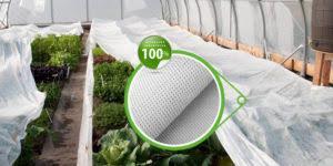 Агроволокно белое, плотность 42 г/м.кв. (1.6мх100м)