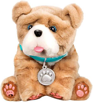 Интерактивный щенок Ролли Люблю целоваться Little Live Pets My Kissing Puppy Rollie, фото 2