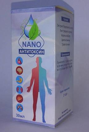 Anti Toxin nano - Капли от паразитов Антитоксин Нано, фото 2