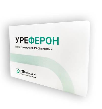 Капсулы Уреферон - эффективное средство от простатита, цистита, уретрита и других недугов мочеполовой системы, фото 2