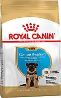 Сухой корм 12 кг для щенков породы Немецкая овчарка Роял Канин / GERMAN SHEPHERD PUPPY Royal Canin