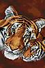 """Схема для вышивки бисером на габардине """"Тигры"""""""