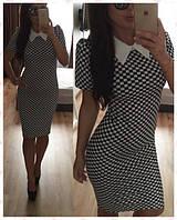 Платье трикотажное кубик/воротничек. Арт - 363/10 Купить женские платья от производителя