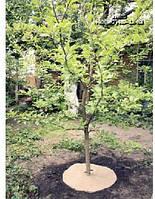 Круги для утепления деревьев из льна 45*45 упаковка 4 шт.
