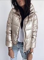 Женская теплая куртка короткая. Цвета: серебро, золото, фото 1