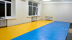 Мат гимнастический «IZOLON BASE» 2000x1000x40 мм, фото 3