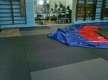 Мат гимнастический «IZOLON BASE» 2000x1000x50 мм, фото 2