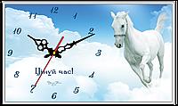 """Годинник настінний прямокутний """"Цінуй час"""""""