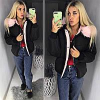 Женская короткая куртка парка Portland Academy черная