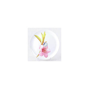 Тарілка обідня Luminarc Water Color 25 см 4652