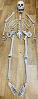 _xD83D_ Хэллоуин! _xDD25_ Модель Скелета с костями, ужасно страшный Декор 28 шт/уп