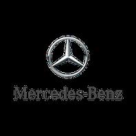 Зимние накладки Mercedes