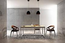 Обеденный стол в стиле LOFT (NS-963246777), фото 2