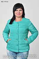 Куртка женская батальная весна\осень пиджачного типа из плащевки САЛАТ 44,46,48,50,56р