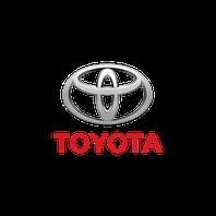 Зимние накладки Toyota