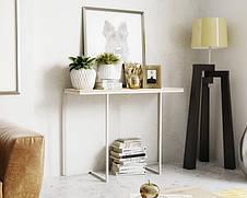 Консоль для дома в стиле LOFT  (NS-963247008), фото 2
