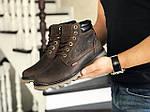 Чоловічі черевики Levis (темно-коричневі) ЗИМА, фото 2