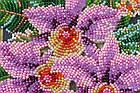 Набор-миди для вышивки бисером Каттлея (20 х 20 см) Абрис Арт AMB-027, фото 2
