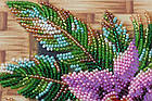 Набор-миди для вышивки бисером Каттлея (20 х 20 см) Абрис Арт AMB-027, фото 4