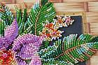 Набор-миди для вышивки бисером Каттлея (20 х 20 см) Абрис Арт AMB-027, фото 5