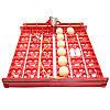Красный лоток автоматического переворота для инкубатора на 36 (144) яиц БЕЗ мотора, фото 4