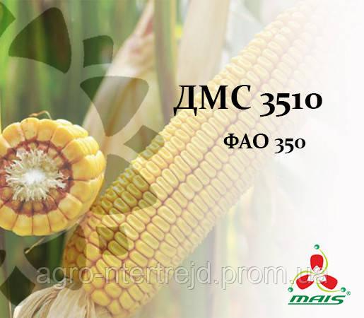 Семена кукурузы ДМС 3510 ФАО 350