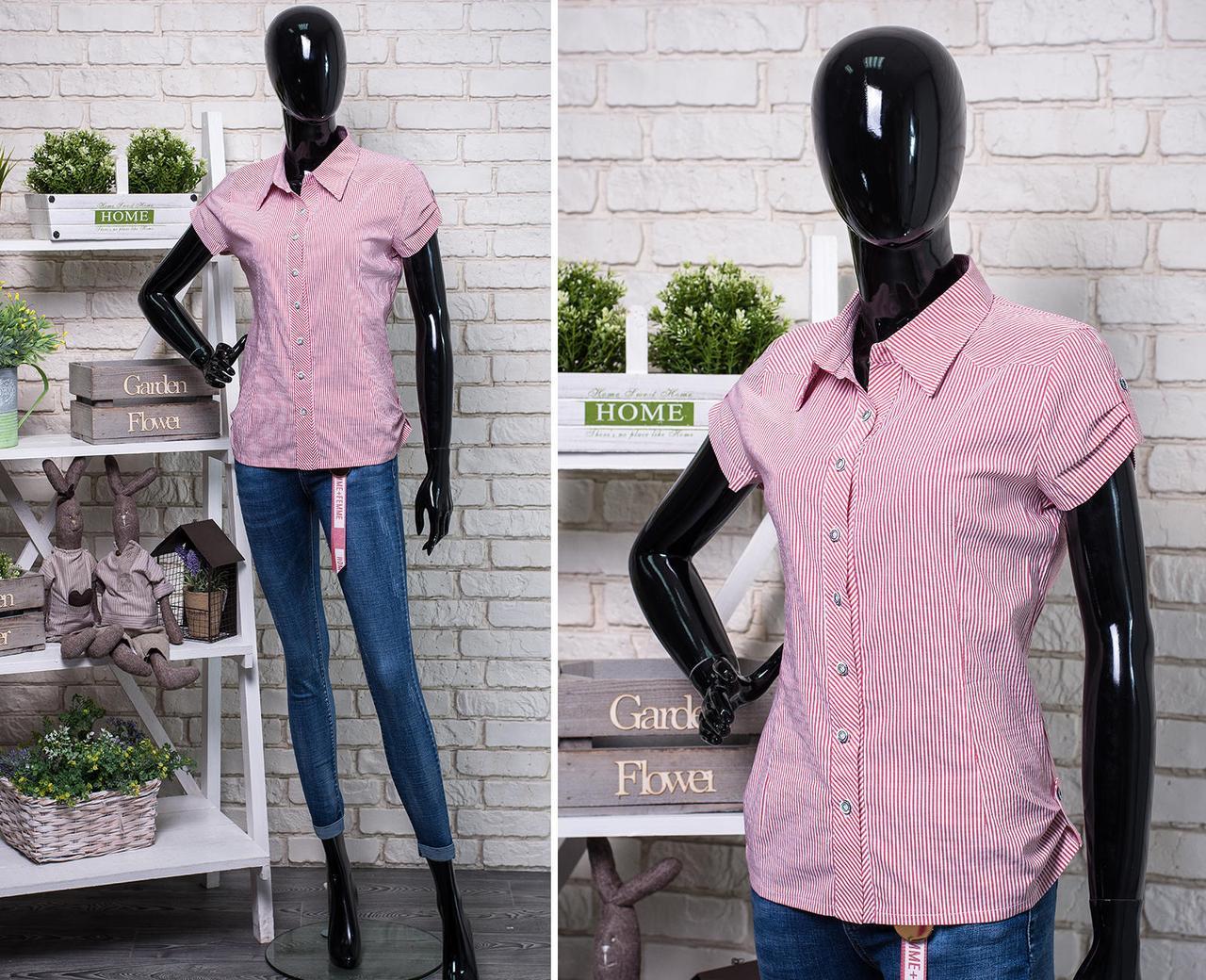"""Прекрасная женская блуза ткань """"Хлопок+стреч"""" размер 50 батал"""