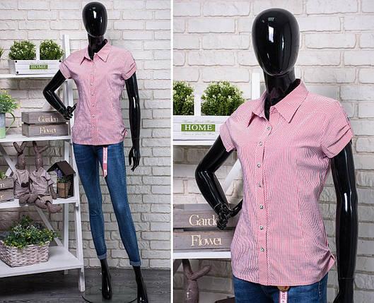 """Прекрасная женская блуза ткань """"Хлопок+стреч"""" размер 50 батал, фото 2"""