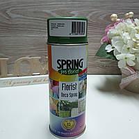 Краска для живых цветов в баллончике GREEN OLIVE 011
