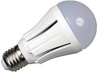 Светодиодная лампочка 12W/E27/2700K AC220 V