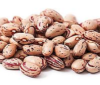 ФАСОЛЬ РОЗОВАЯ, семена бобы фасоли органической для употребления в пищу и для проращивания 100 грамм, фото 1